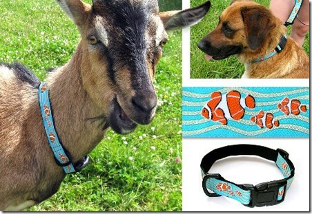0590-dog-collar-leash-1_b