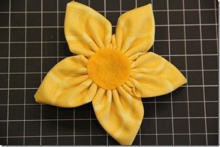daffodil 11