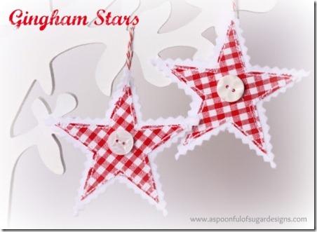 Gingham Stars 5    .jpg