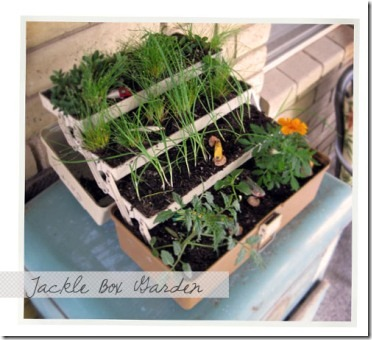 tackleboxgarden1