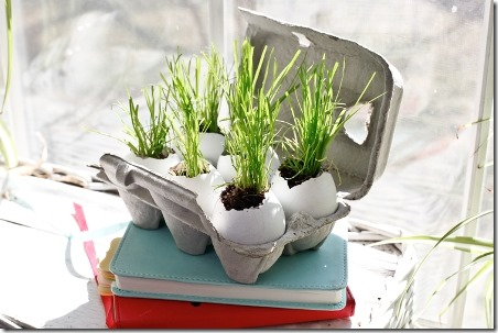 DIY Egg Planters by Hello Home Shoppe