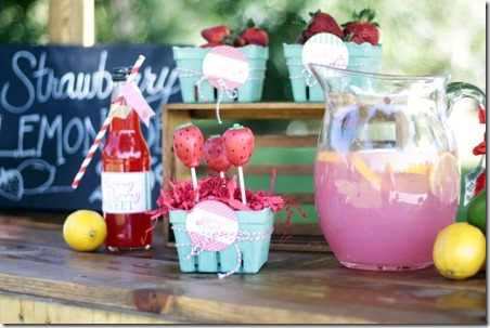 Strawberry Lemonade Party - Mimis Dollhouse