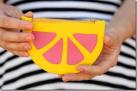 Citrus Wedge Coin Purse by Delia Creates