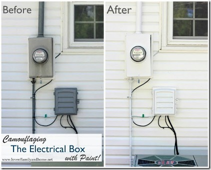 Camouflaging the Electrical Box by Love of Family and Home