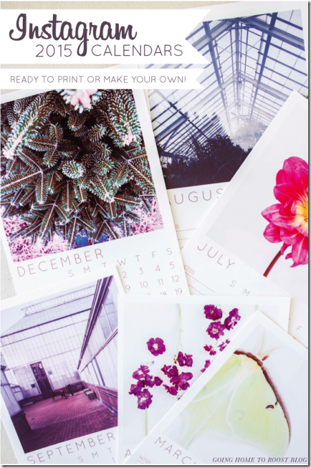 2015 Printable Calendar from Going Home to Roost