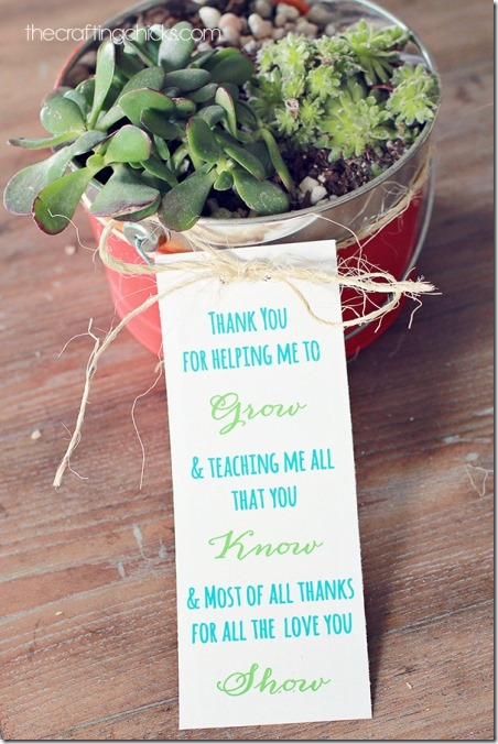 Plant Teacher Gift from The Crafting Chicks