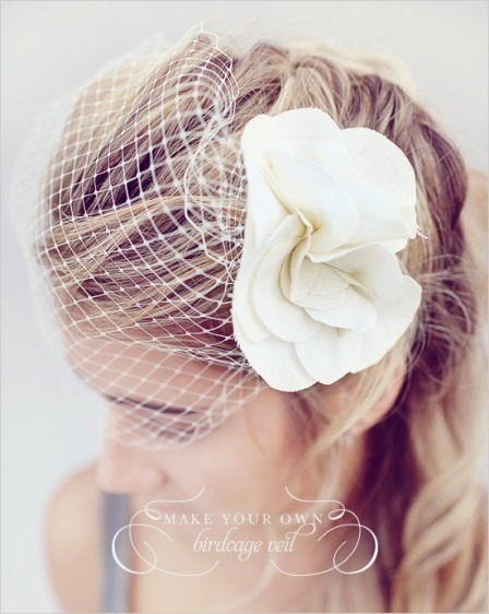 http://craftystaci.files.wordpress.com/2015/07/birdcage-veil-from-wedding-chicks.jpg?w=448&h=562