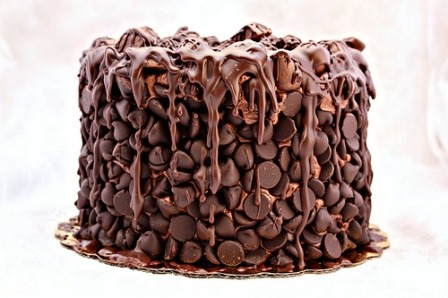 Chocolate Wasted Cake from Art of Dessert