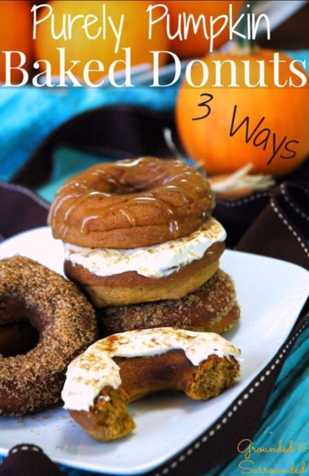 Purely Pumpkin Baked Donuts 3 Ways from Grounded and Surrounded